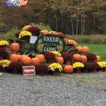 Foolish Farms...old wagon, mums and pumpkins. Beautiful!!