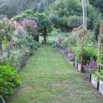 the gardens