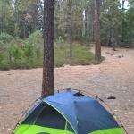 Foto de Wawona Campground