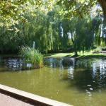 Petit étang