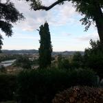 Photo de A Casa di Olivo