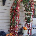 nice fall decoration