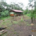 Photo of Tarantula Eco Hostel