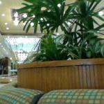 Four Ambassadors Suites Hotel