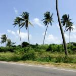 On the road to Bentota