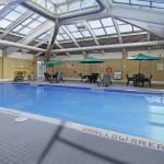 Enjoy our Beautiful Solarium Swimming Pool