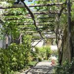Relais Villa Angiolina Foto