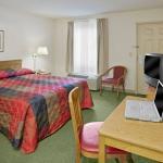 Studio Suite - 1 Double Bed
