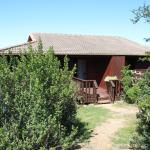 Hütte in der Kariega Lodge