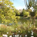 lac de coulon