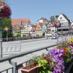 Stadt Tübingen Foto