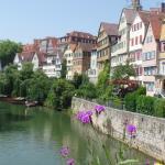 Hermosas casa sobre el río Neckar