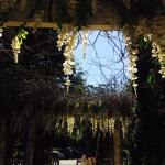 Outside gardens