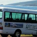 Nature's Cape Tours