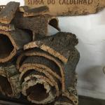 1historical-Silves, Monchique mountains, lunch, Cape St Vincent, Lagos; 2 photo tour- Loule, Cal