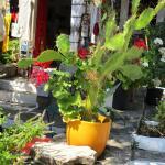 Arolithos Traditional Cretan Village Foto