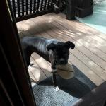 resident charmer -- Daisy