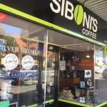 Siboni's