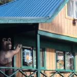 Bear's Den Cafe