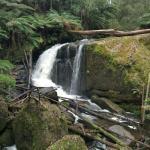 Toorongo Falls
