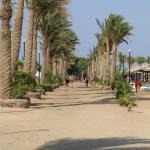 Photo of Arabia Beach Resort
