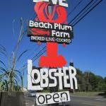 Foto de Beach Plum Lobster Farm Lobster and Clam Supplier