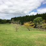 Photo de Attunga Park Country Retreat