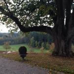 Schloss Freudental Foto