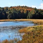 Black Mountain Pond