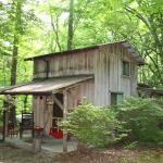 Honeymoon Woods Cabin - Garden of Eden Cabins, Cosby, TN