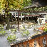 Braugarten Forst - Giardino Forst all'aperto