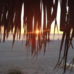 Amazing sunsets!  Great fishing especially early in the morning!  Walking distance (beach or roa