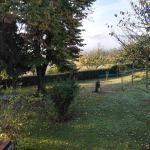 Photo of I Glicini