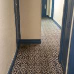 Halls, very old carpets and awful colours