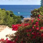 Hotel RD Costa Portals Foto