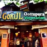 ภาพถ่ายของ Gokul Oottupura