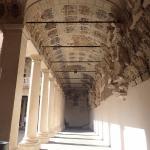 Photo de Université de Padoue