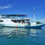 Blue Water Adventures Komodo - Day Tours