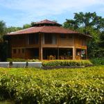 Macaw Lodge Foto