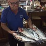 Frischer Fisch im Casa do Pulpo