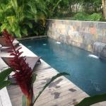 pool at Malecon house