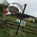 Photo de Hillview House Bed & Breakfast Clare