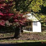The Cabins at Brookside Foto