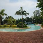 사용가능한 수영장