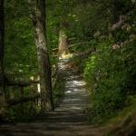 One of the many beautiful hiking trails at the Mohonk Mountain House (photo by: Cory Schloss Ima