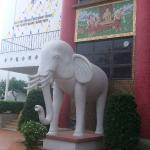 象さんもいました