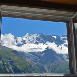 View out the window at Chalet Bobs
