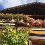 Hotel Steiger Foto
