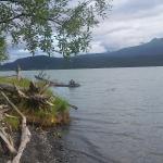 View of Kenai Lake
