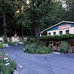 Fern Grove Cottages at the Russian River